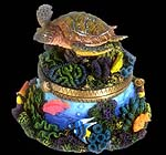 Turtle Dreams Hinged Trinket Box