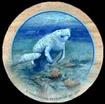 Manatees Thirsty Stone Coaster Set